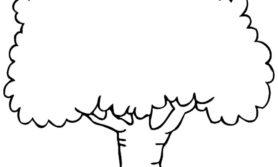 Desenhos de árvore para colorir