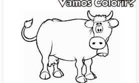 Desenhos de boi para colorir